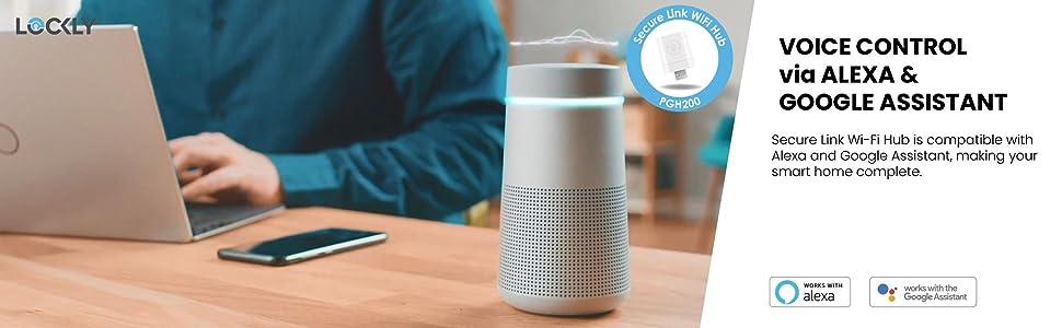 Voice control via Alexa and Google Assistant