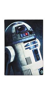 Star Wars canvas wall art