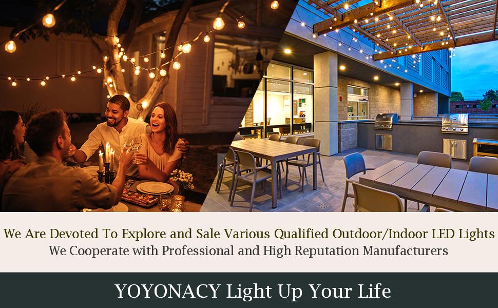 Outdoor/Indoor LED Lights