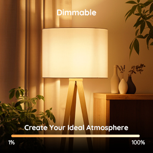 Brightness Dimmable