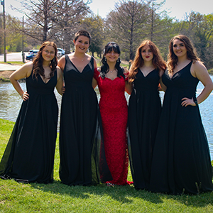 V Neck Bridesmaid Dresses for Bride Wedding