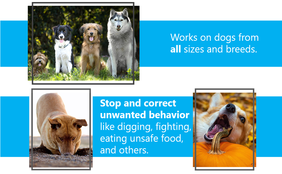 """""""works on dogs from all sizes and breads"""" """"stop and correct unwanted behaviour"""""""