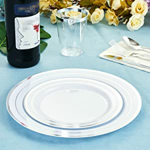 Silver Plastic Party Plates