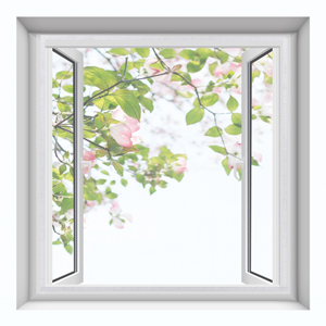 A casement windows with window screen