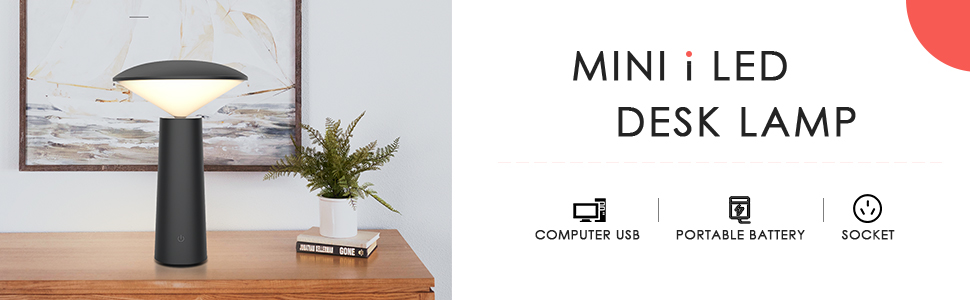 Mini desk lamp with USB charging port