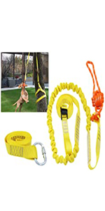 dog bungee toy