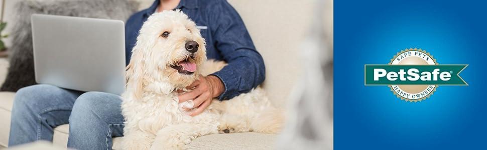 PetSafe Work From Home