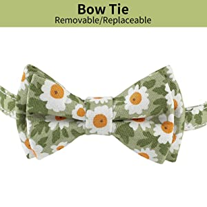 JOYPAWS Green Breakaway Cat Collar Bow Tie Adjustable Safety Kitten Collars Pet Collars