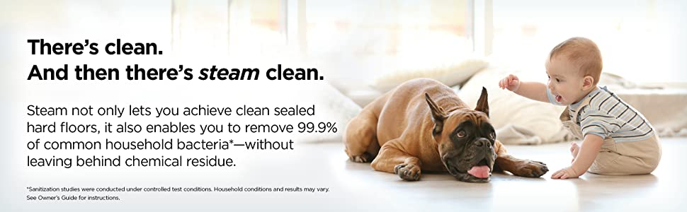 baby and dog playing - there's clean and then there's steam clean - removes 99.9% of bacteria