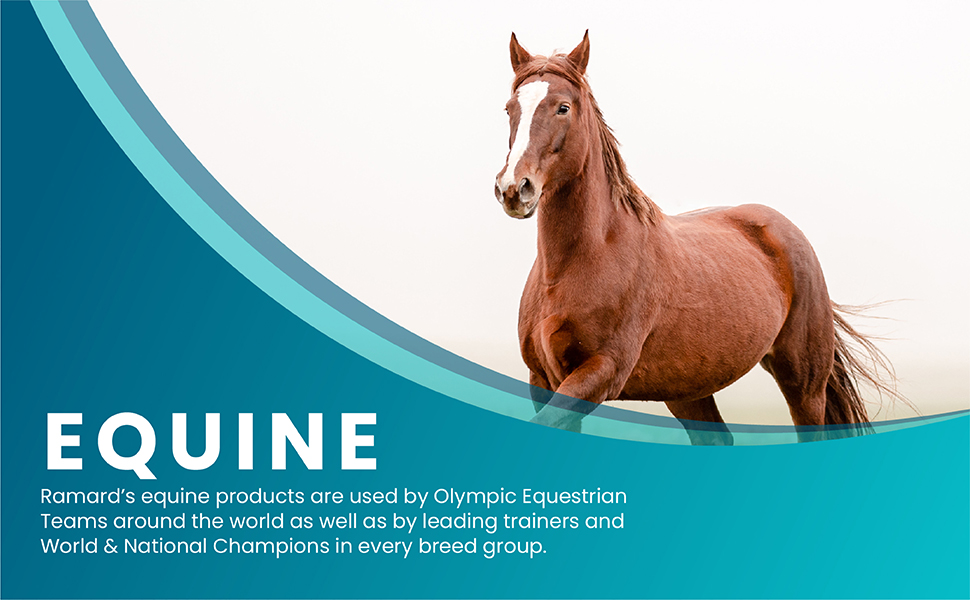 joint horses horse supplement care for health bone equine total supplements support pet