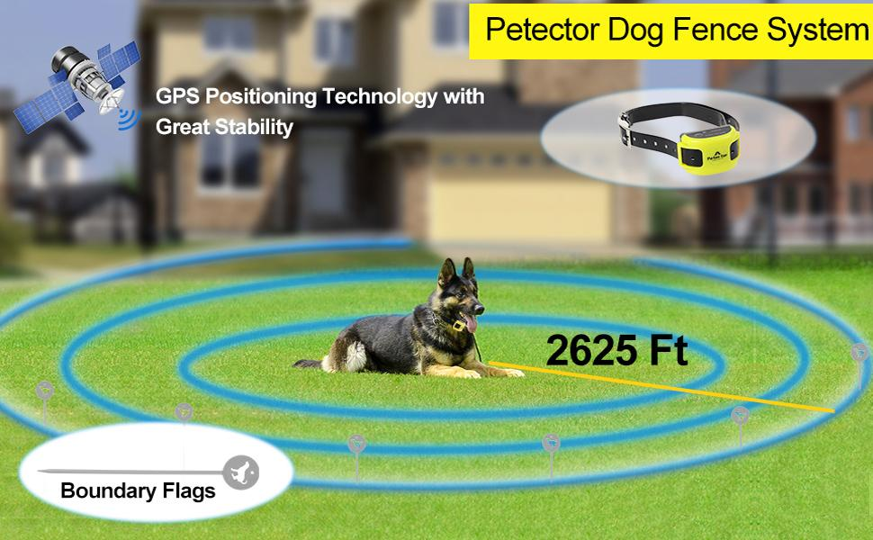 Petector Dog Fence System