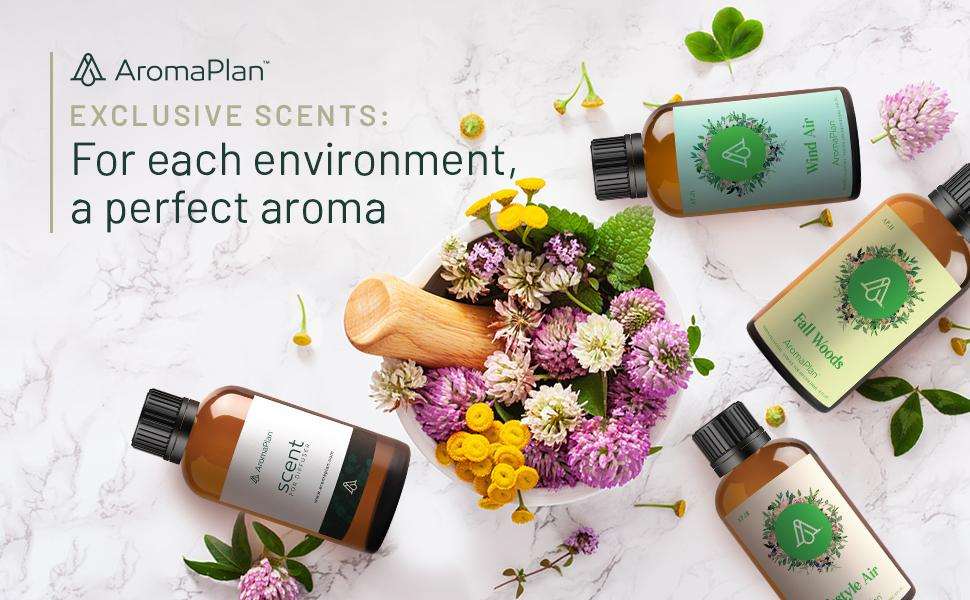 For each enviroment a perfect aroma