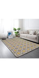 4x6 rug