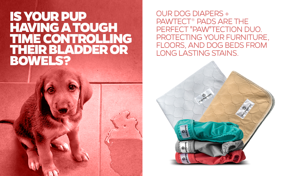 Pee pads, washable dog pee pads, dog diapers, cat diapers, whelping pad