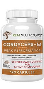 real mushrooms cordyceps extract