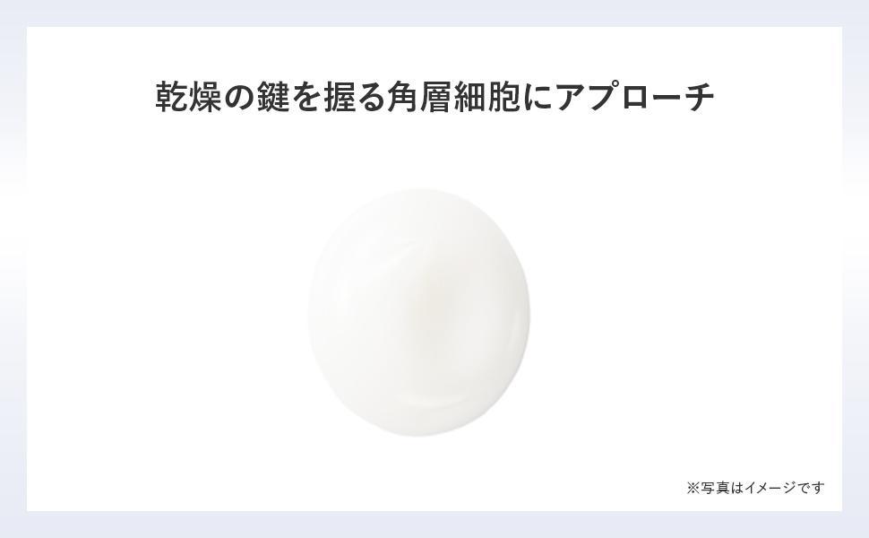 モイスティシモクレンジングクリーム