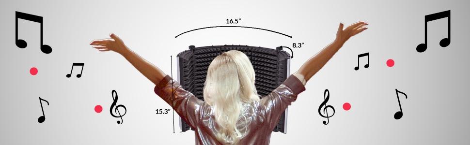 Microphone isolation box