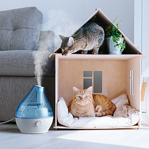 Humidifiers for Pets