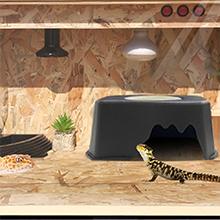 Reptile pet box01