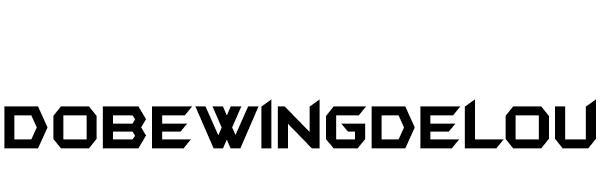 DOBEWINGDELOU PS5 ACCESSORIES