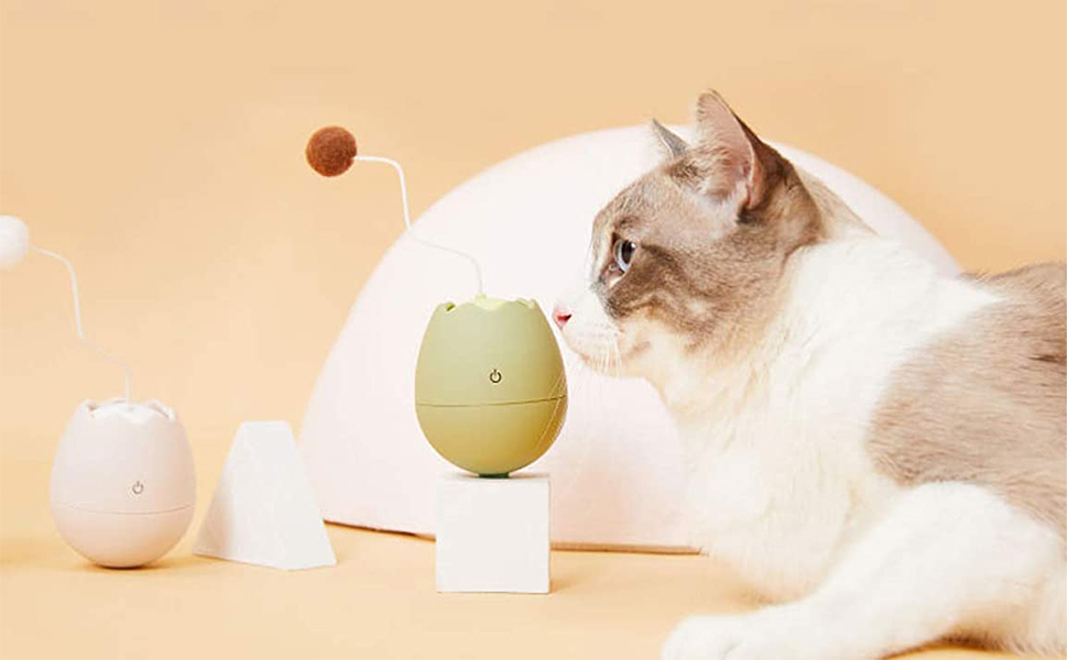 very interesting cat interactive toy