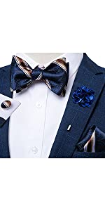 bow tie and lapel pin set