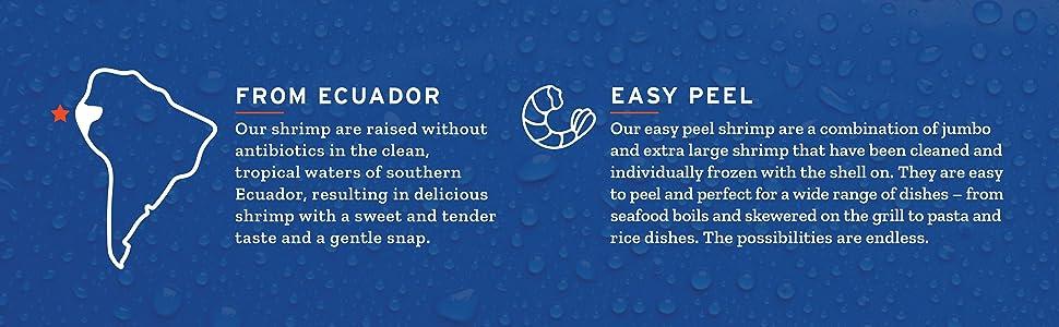 Easy Peel Shrimp from Ecuador
