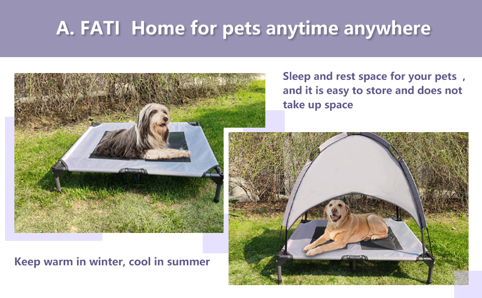 A. FATI Home for pets anytime anywhere