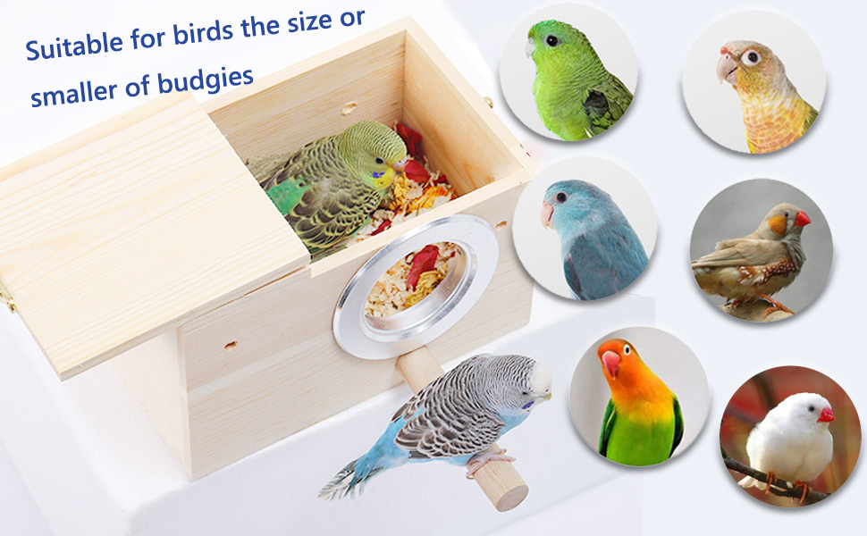 Suitable for budgie, parakeet, finch, canary, sparrow, lovebirds and other small sized birds.