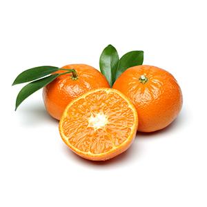 柑橘系の爽やかな香り。