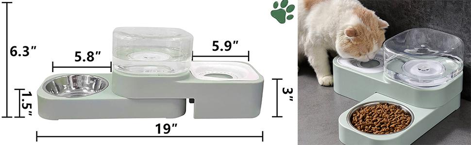 cat dog bowl