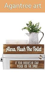 Alexa,Flush The Toilet amp;amp; Please Use The Spray