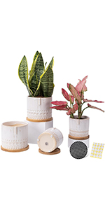 5.25+4 inch ceramic planter pots eith bamboo trays
