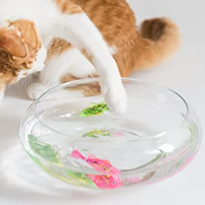 cat playing with swimming robot fish