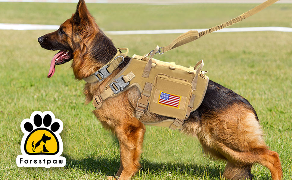 Forestpaw whole set of tactical dog collar, harness and Leash