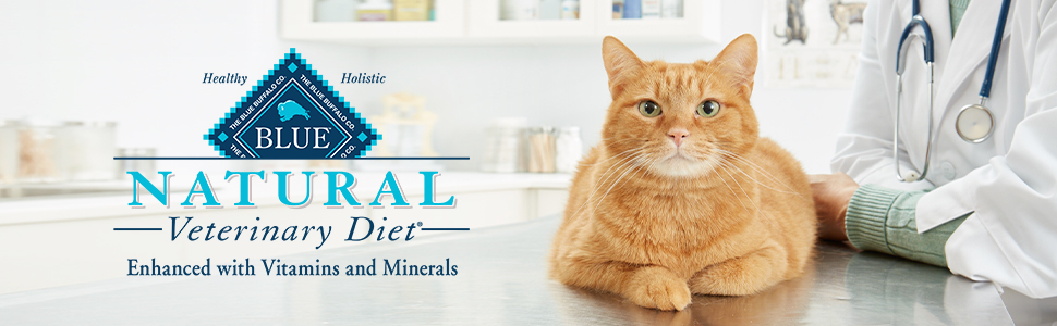 cat food, wet cat food, cat food wet, cat food dry, dry cat food, canned cat food, science diet