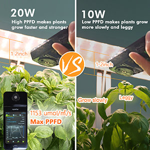 High PPFD makes sure plants can grow faster and stronger