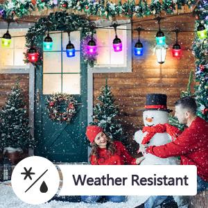 Weather Resistant
