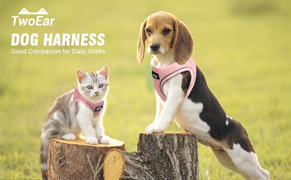 harness pink
