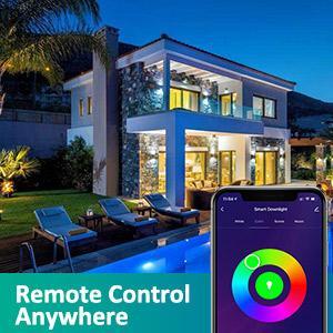 downlight remote control