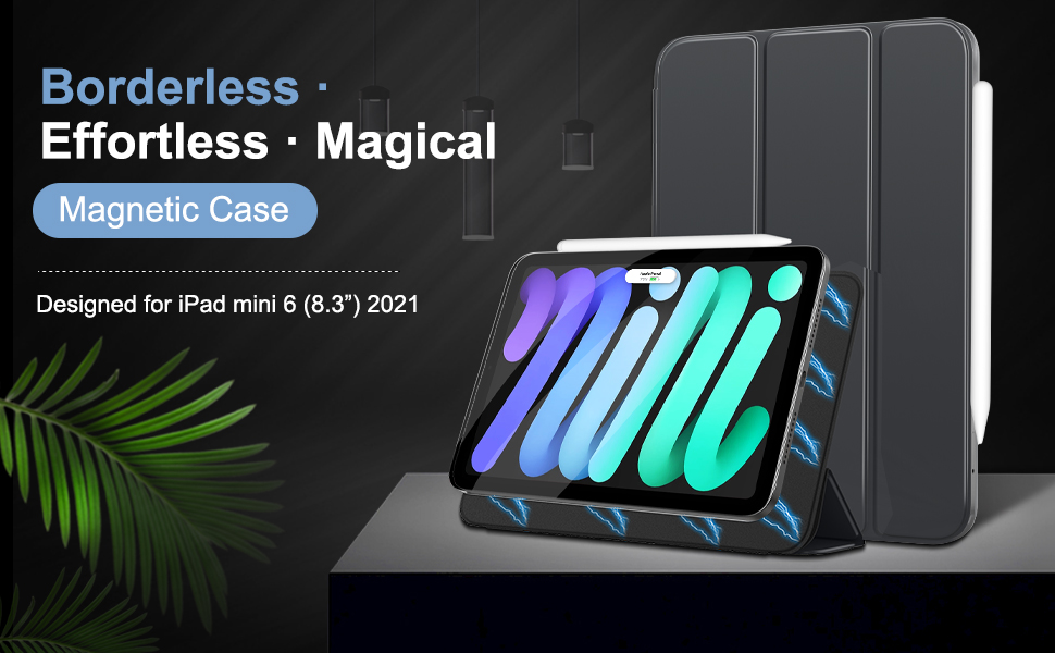 magnetic case