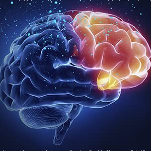 When the inhibition is dominant in the cerebral cortex,people will sleep