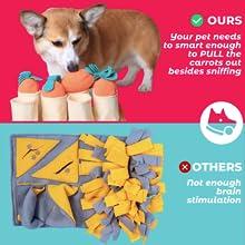 Fossa Snuffle mat train your pet smarter