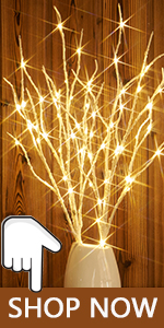 lighted up tree branches