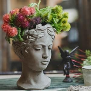 Cute Plants Flower Pot