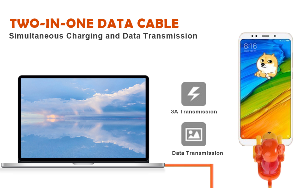 Two-in-one data cable