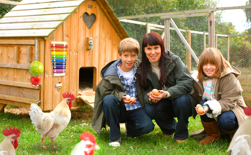 chicken toys for hens in coop