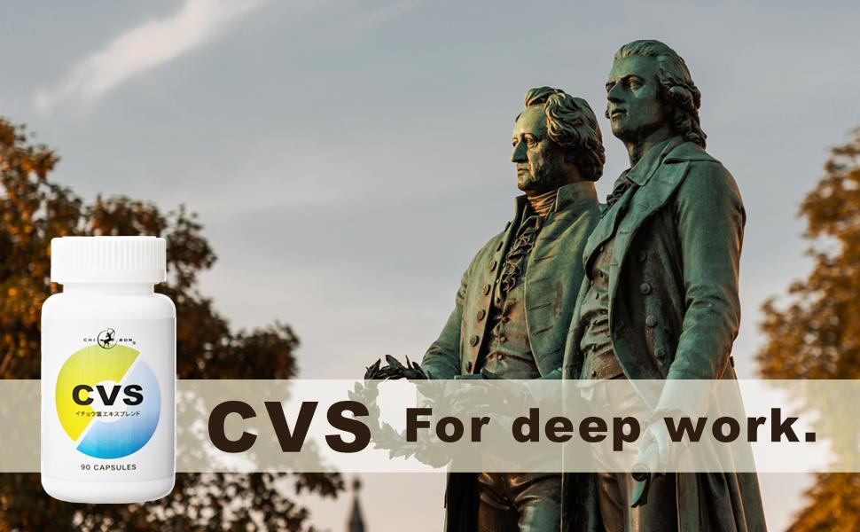 CVSバナー