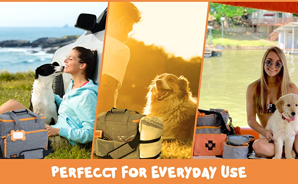 Where can you take our dog travel bag?