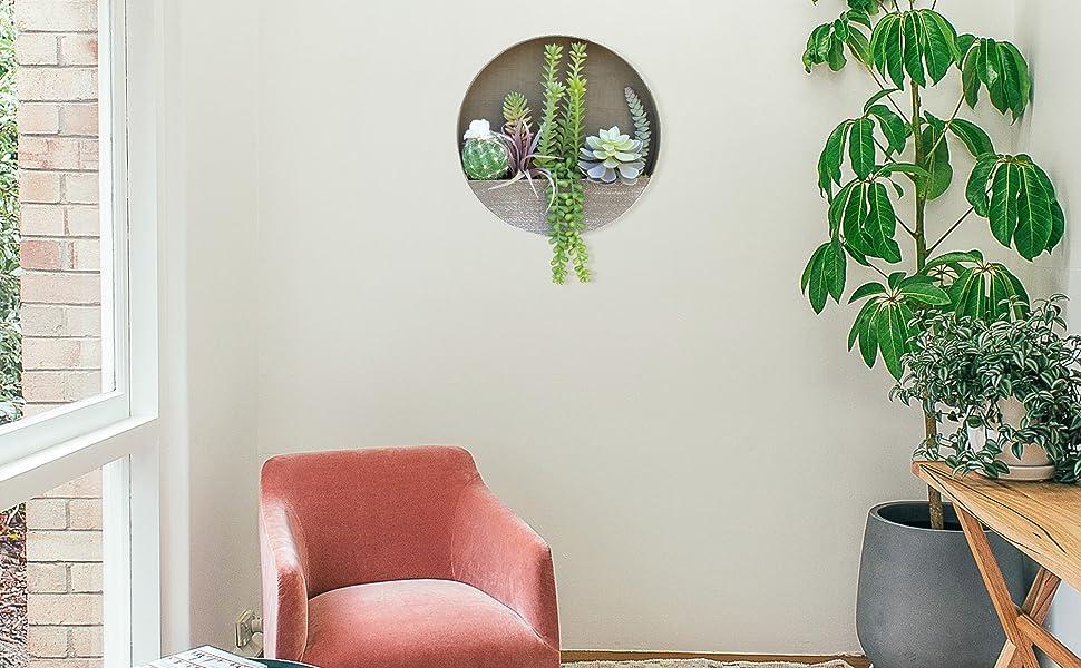 succulents plants artificial